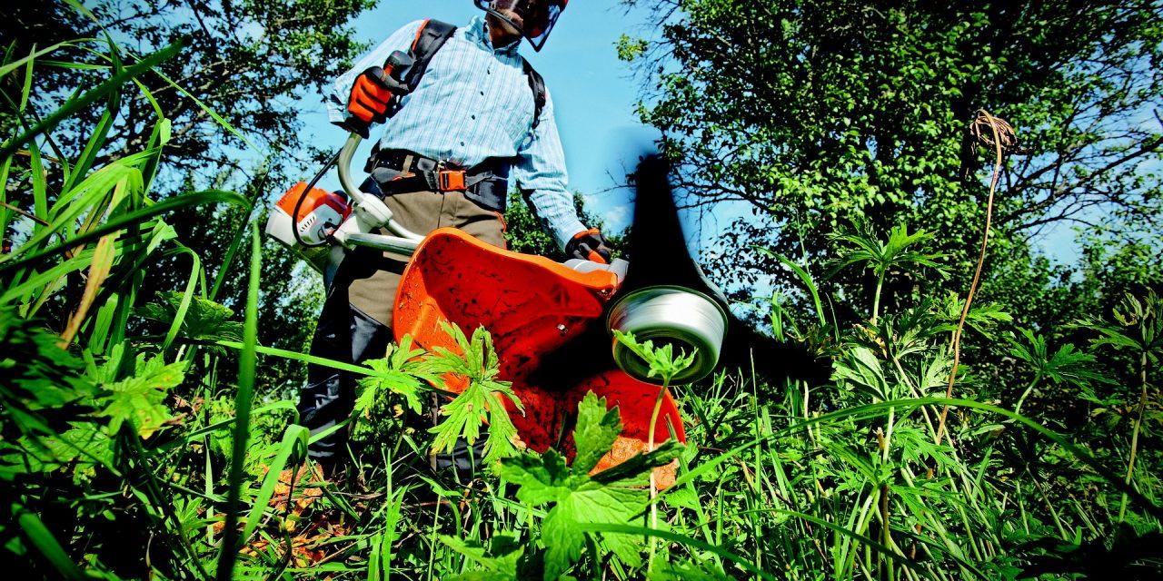Avis sur les Débroussailleuses Greenworks : Comparatif et Guide d'Achat