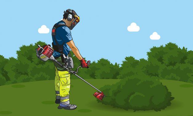 Avis sur les Débroussailleuses Bosh : Comparatif et Guide d'Achat