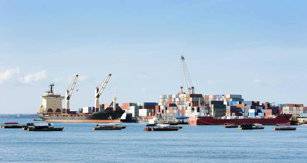 Le business de l'import-export en Afrique: les secteurs porteurs