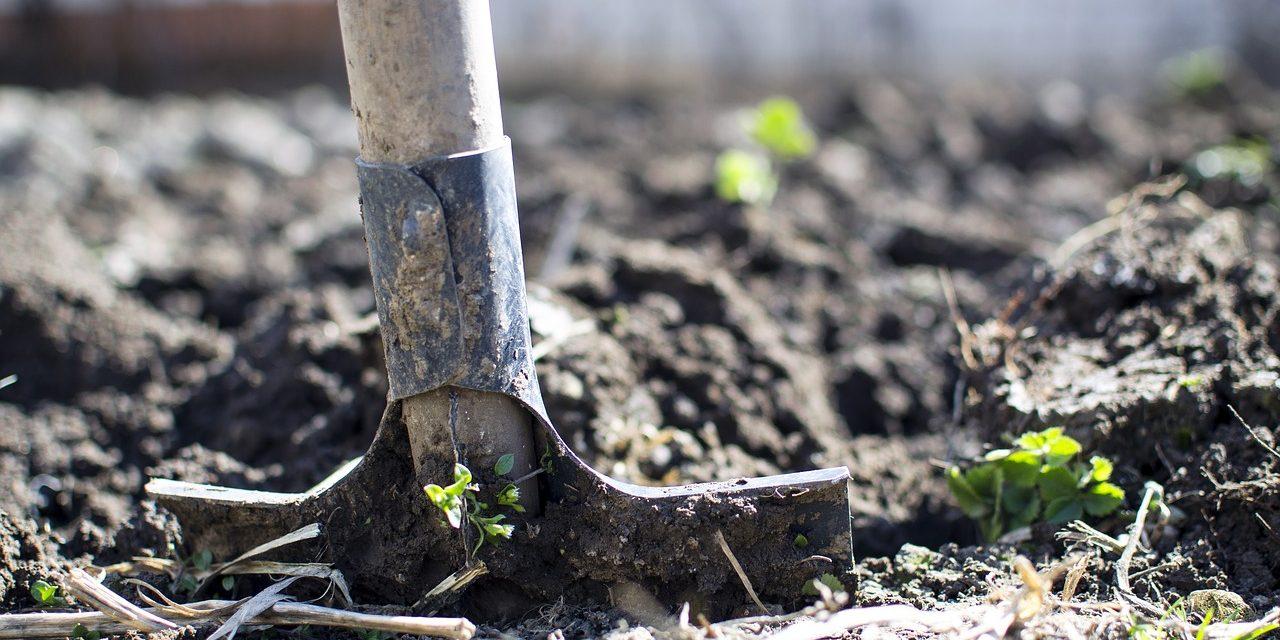 Comment préparer le sol de son jardin quand on n'a pas les bons outils ?