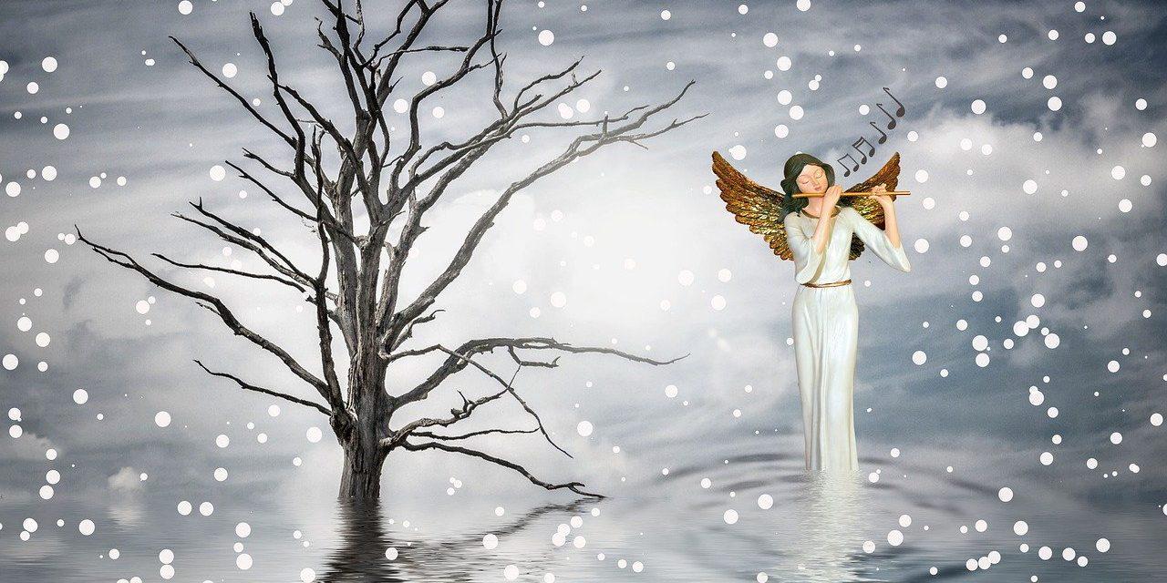 Comment passer des fêtes de noël en musique ?