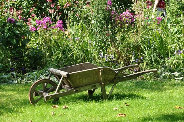 Astuces et conseils pour aménager son jardin