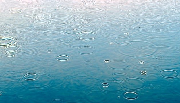 Comment récupérer et réutiliser de l'eau de pluie ?